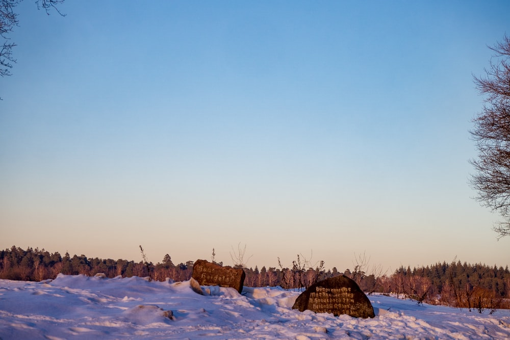 brown wooden house on snow covered ground under blue sky during daytime
