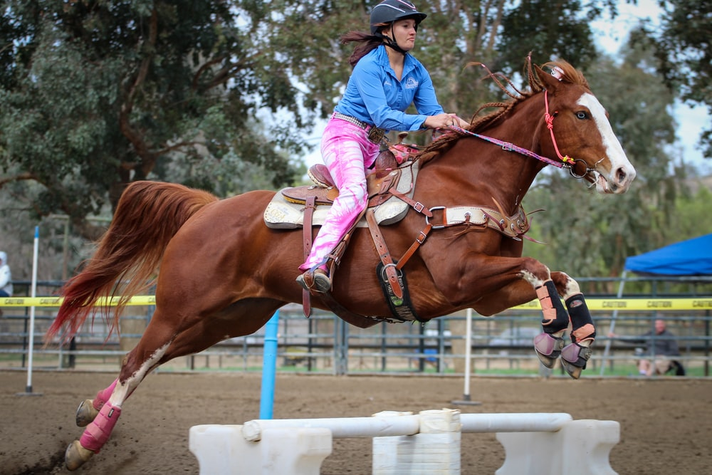woman in blue long sleeve shirt riding brown horse during daytime