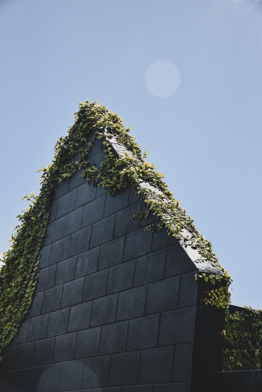 black brick house under blue sky during daytime