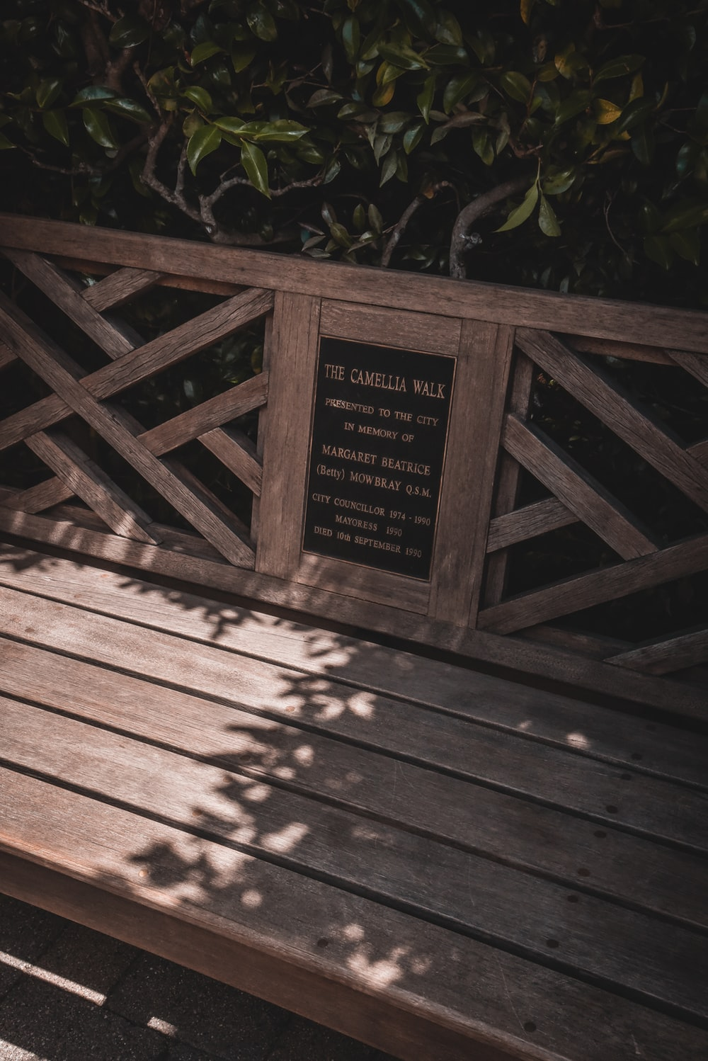 brown wooden signage near green leaves