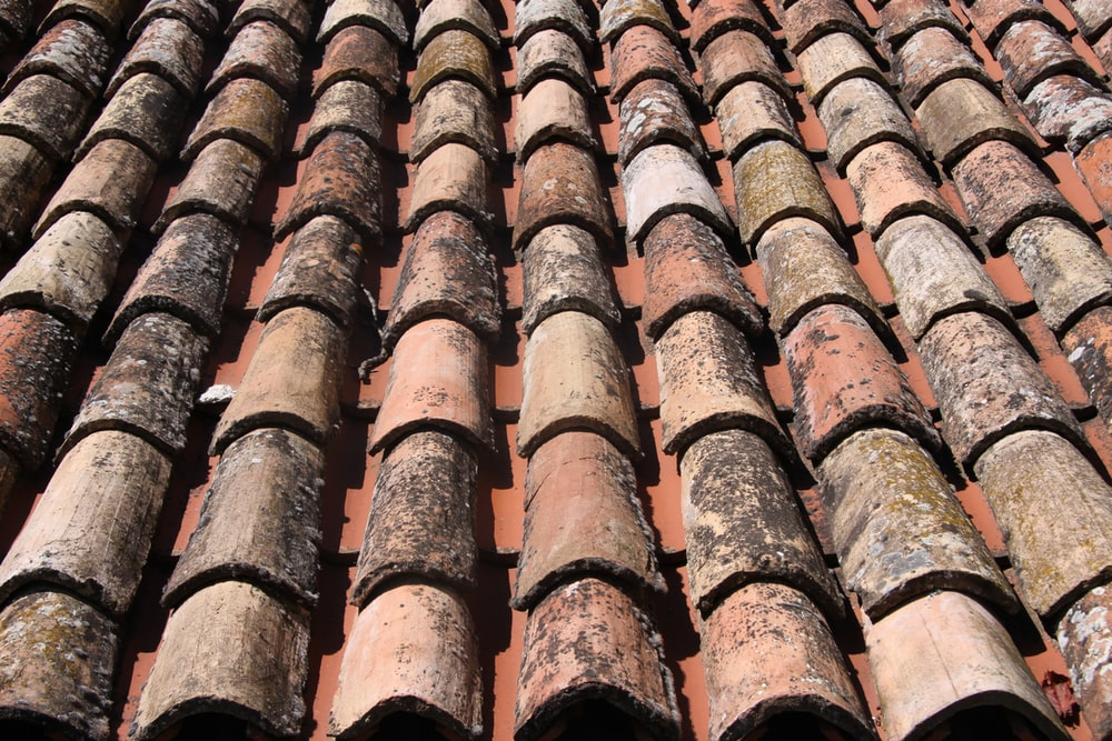 brown roof tiles in close up photography