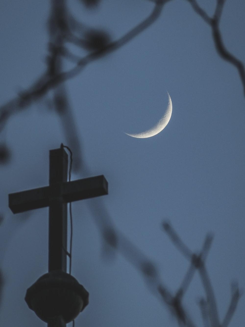 black cross on tree branch