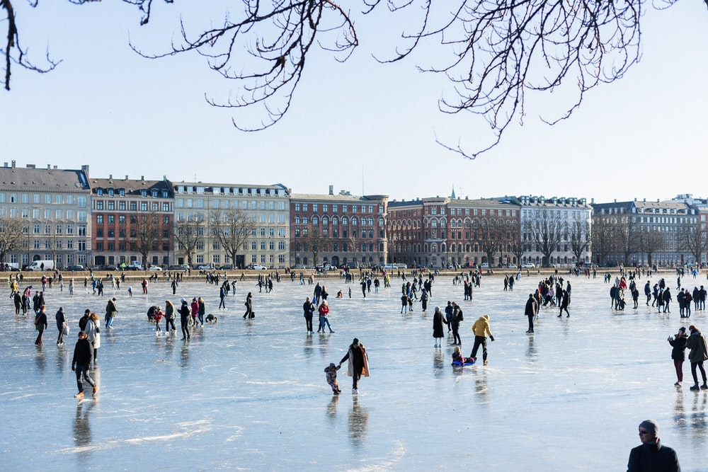 people on ice field during daytime