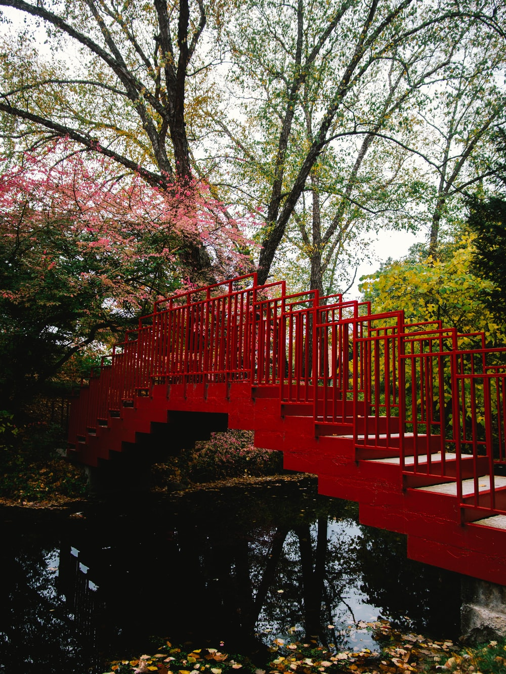 red bridge over river surrounded by trees