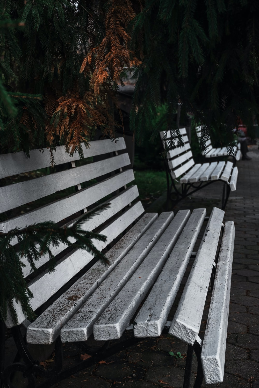 brown wooden bench near green plants during daytime
