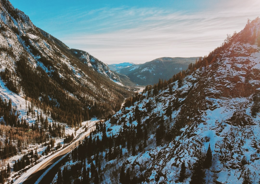 Homes For Sale in Divide Colorado