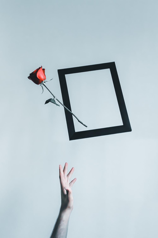 black framed mirror on white wall