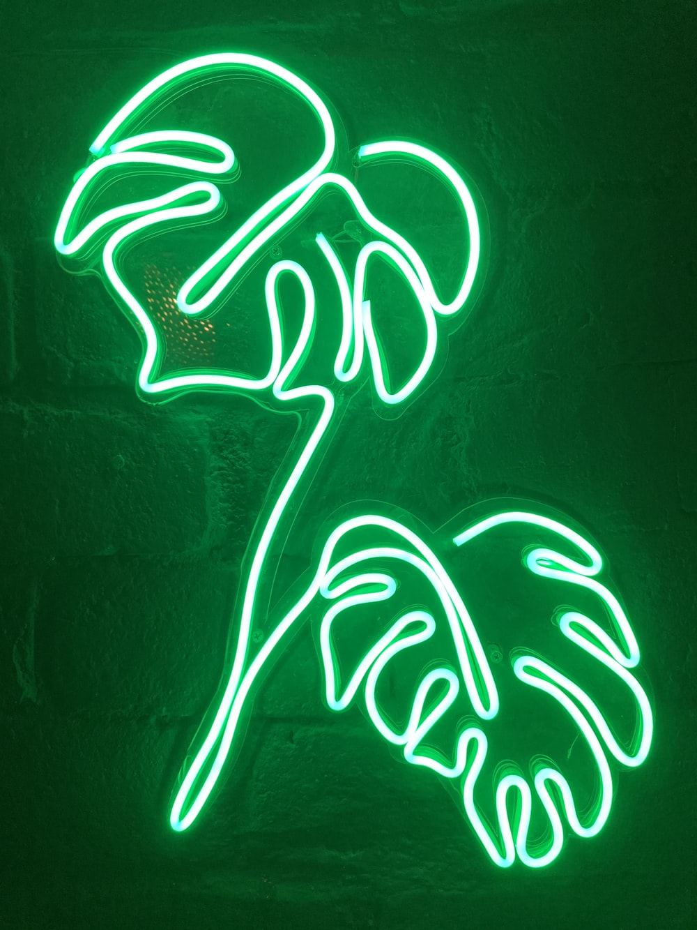 white and green neon light signage