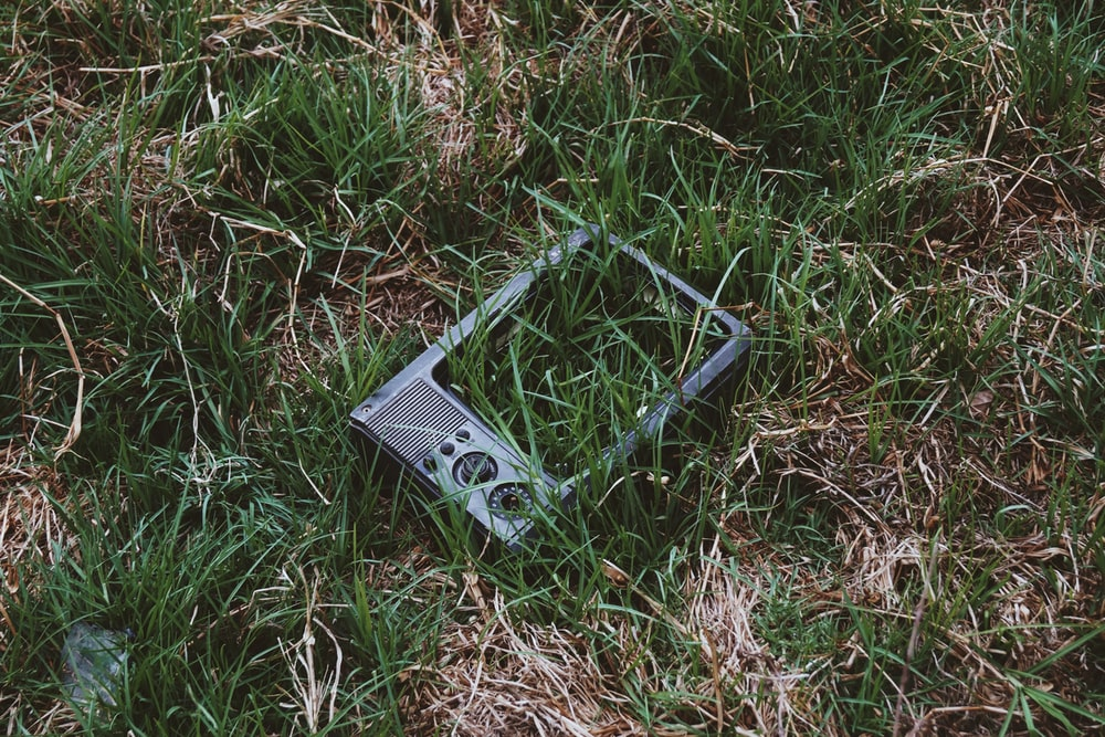 black and silver camera on green grass