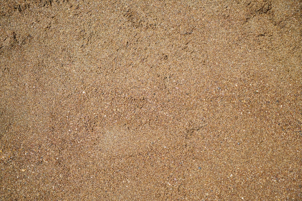 person in black shoes standing on brown sand