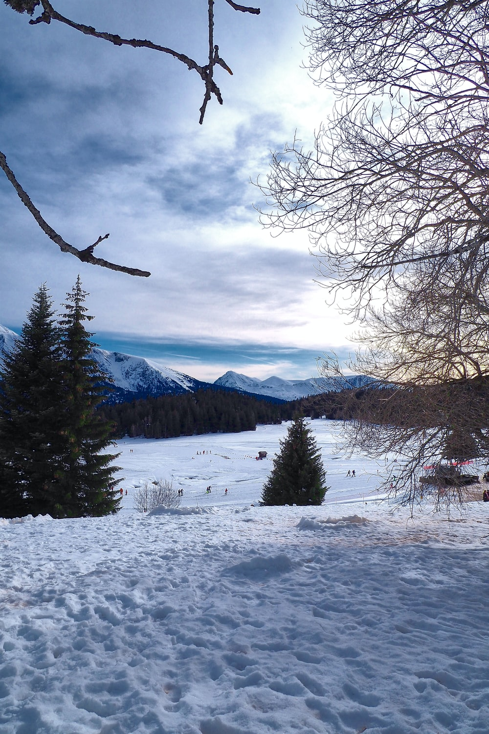 snow covered field with trees and mountains in the distance
