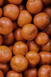 Citrus  citrus stories