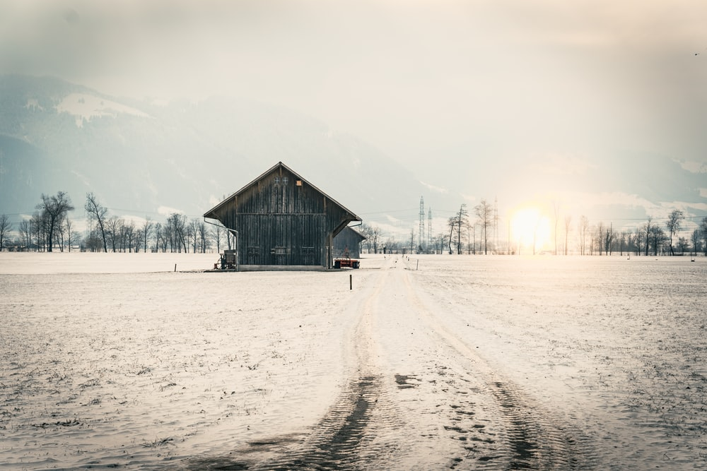 brown wooden house on snow covered field during daytime