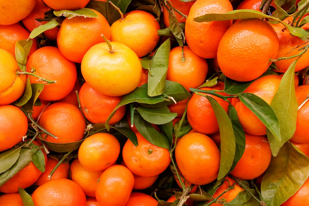 orange fruits on green leaves