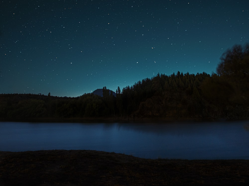 lake surrounded by trees under blue sky during night time