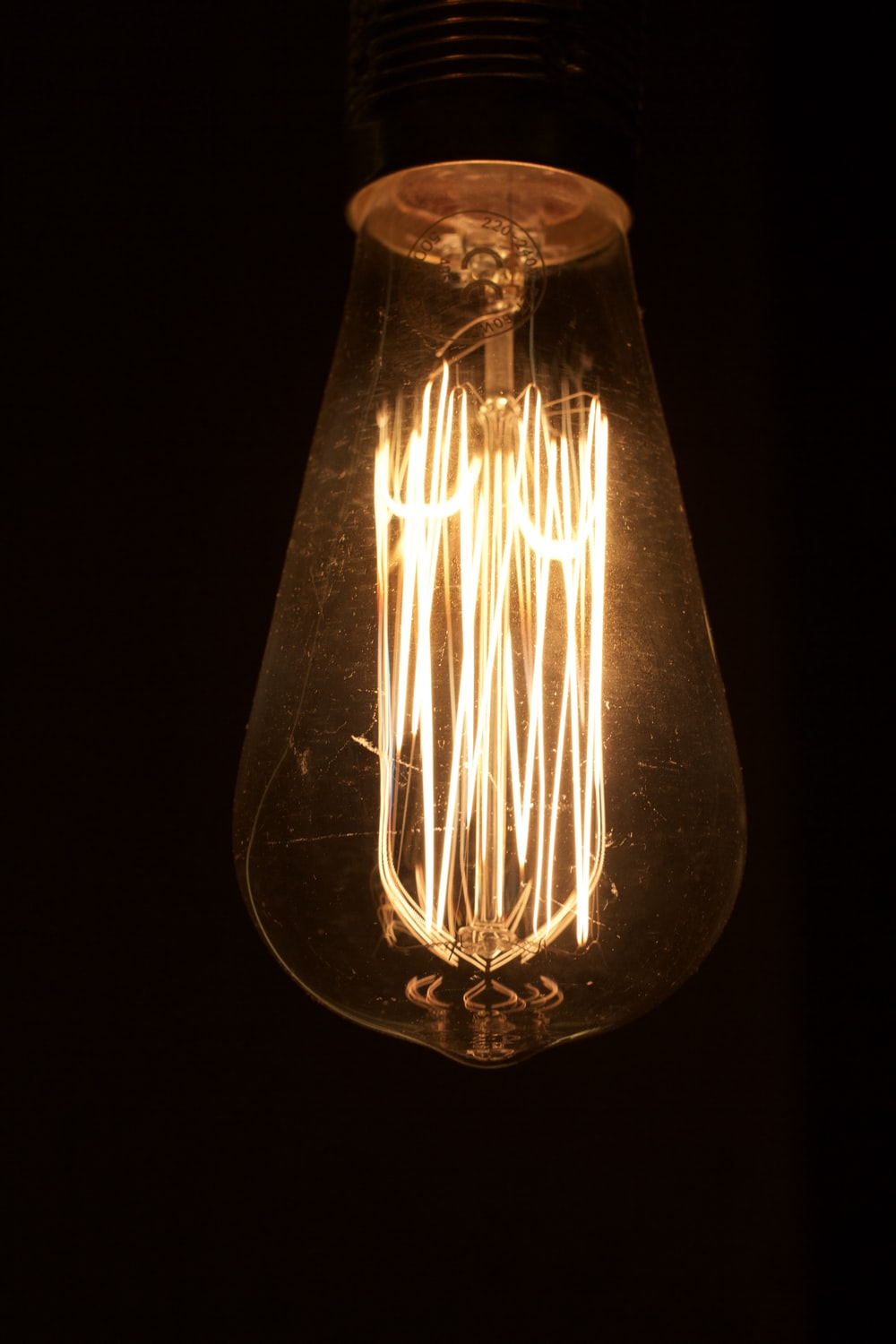 brown and white light bulb