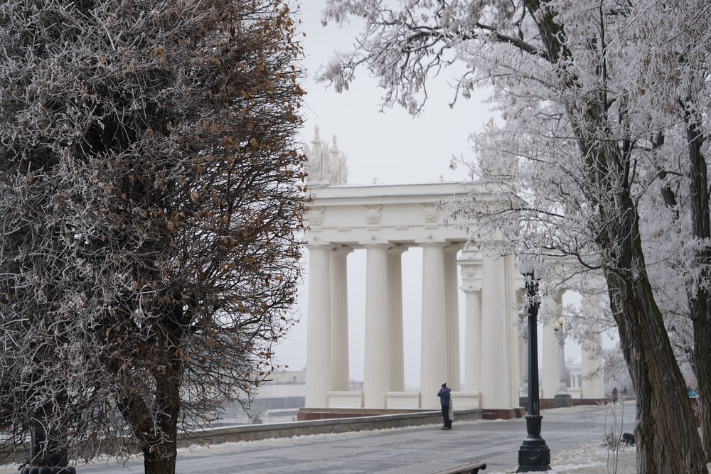 white concrete building near bare trees during daytime