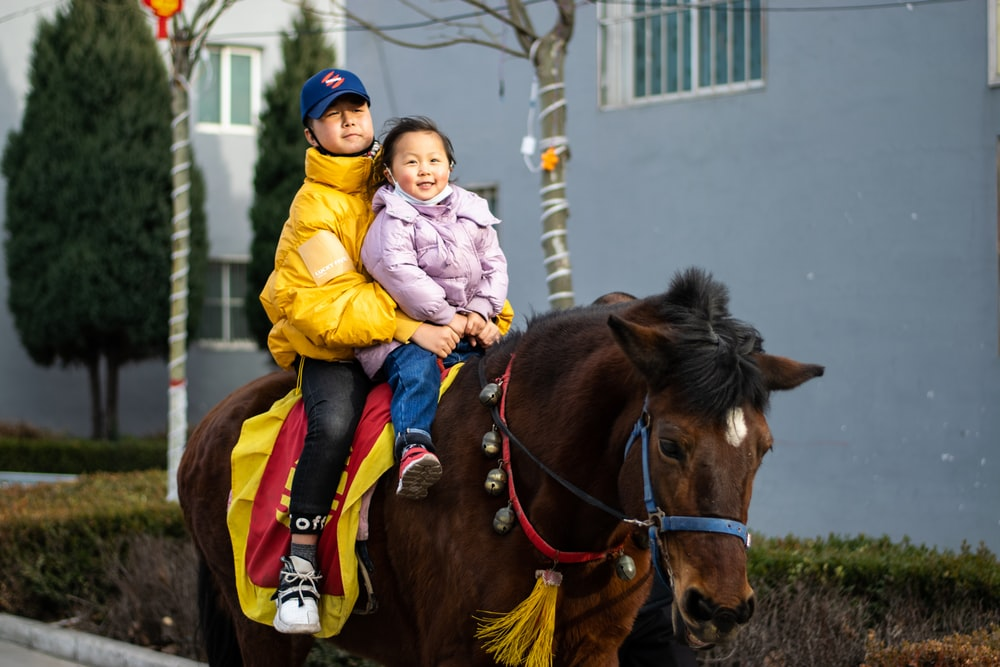 girl in yellow jacket riding brown horse during daytime