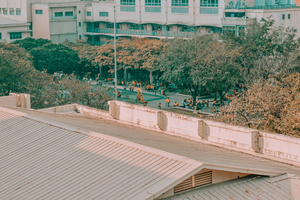 people on a park near a river