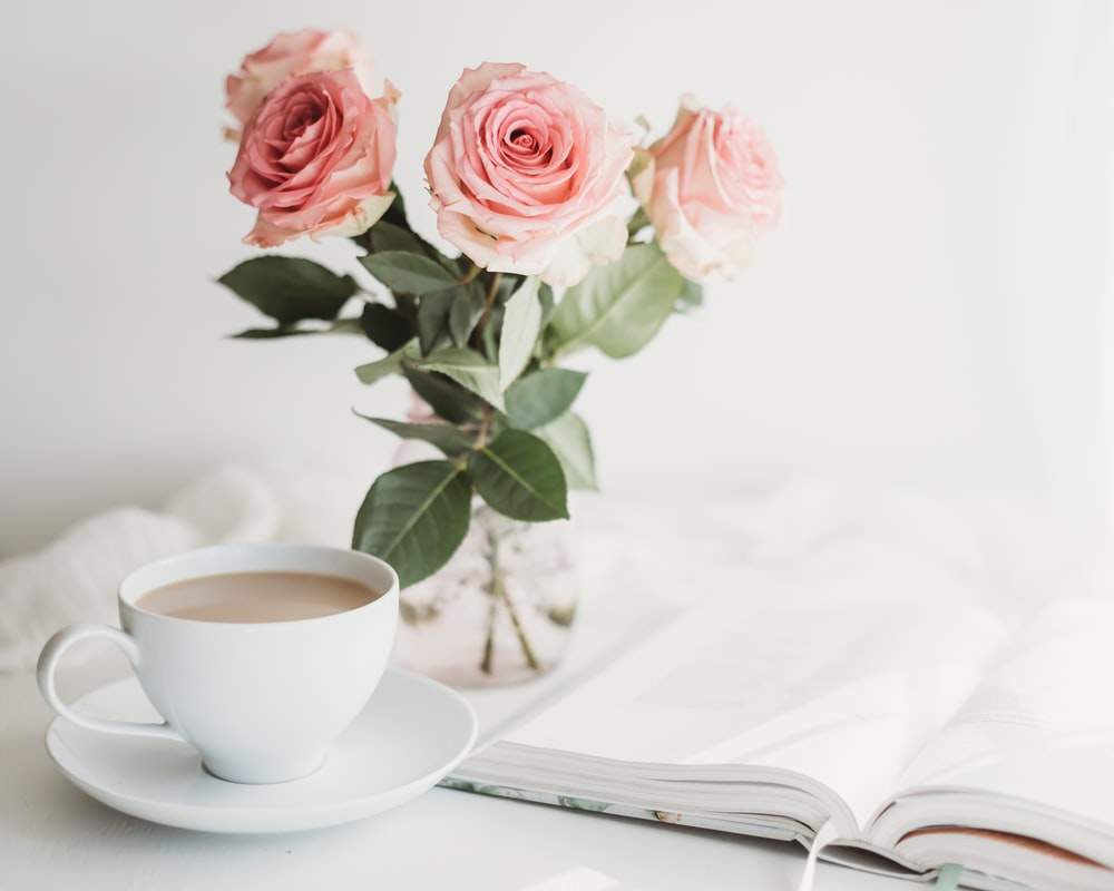 pink roses on white ceramic cup on white ceramic saucer