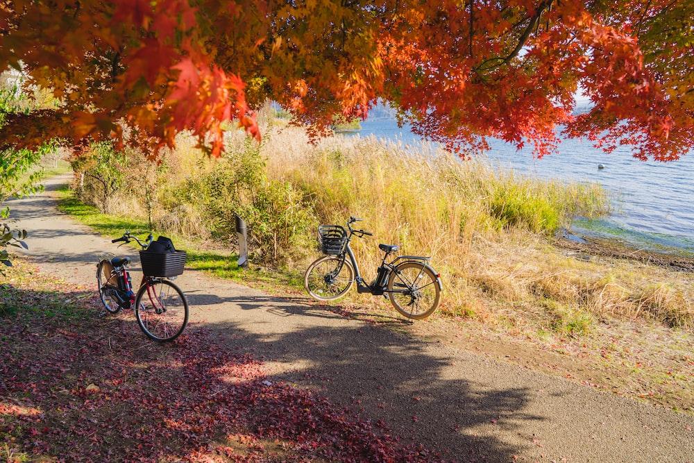 black city bike parked beside green grass field during daytime