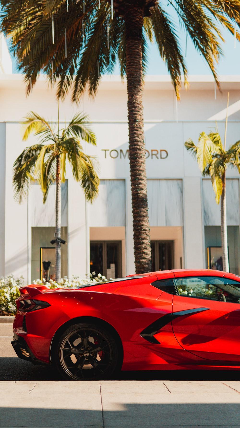 red ferrari 458 italia parked near palm tree