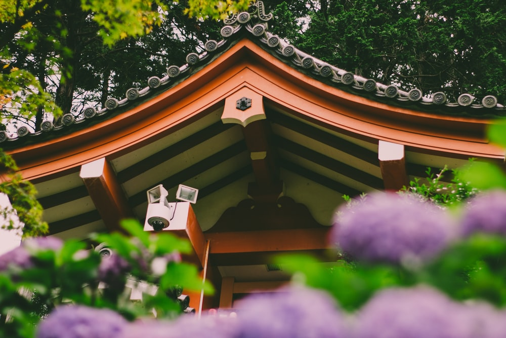 brown wooden house with purple flowers