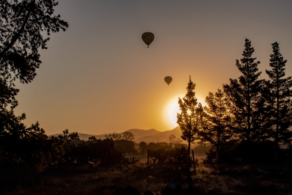 silhouette of hot air balloons during sunset