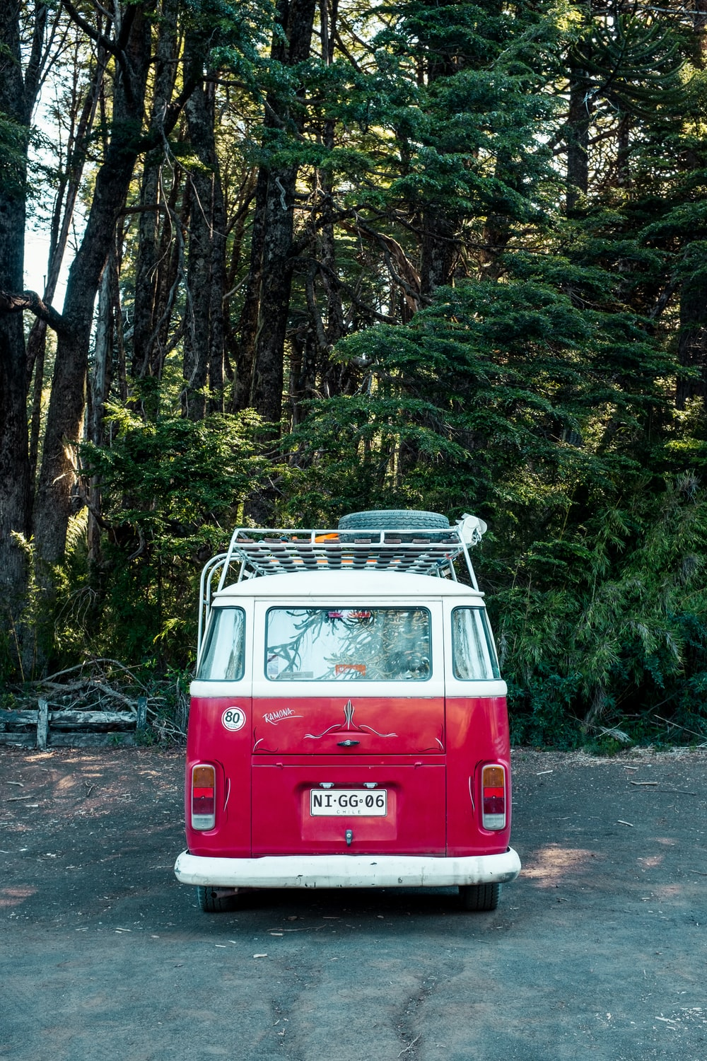 red and white volkswagen t-2 in the woods