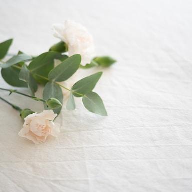 white flower on white textile