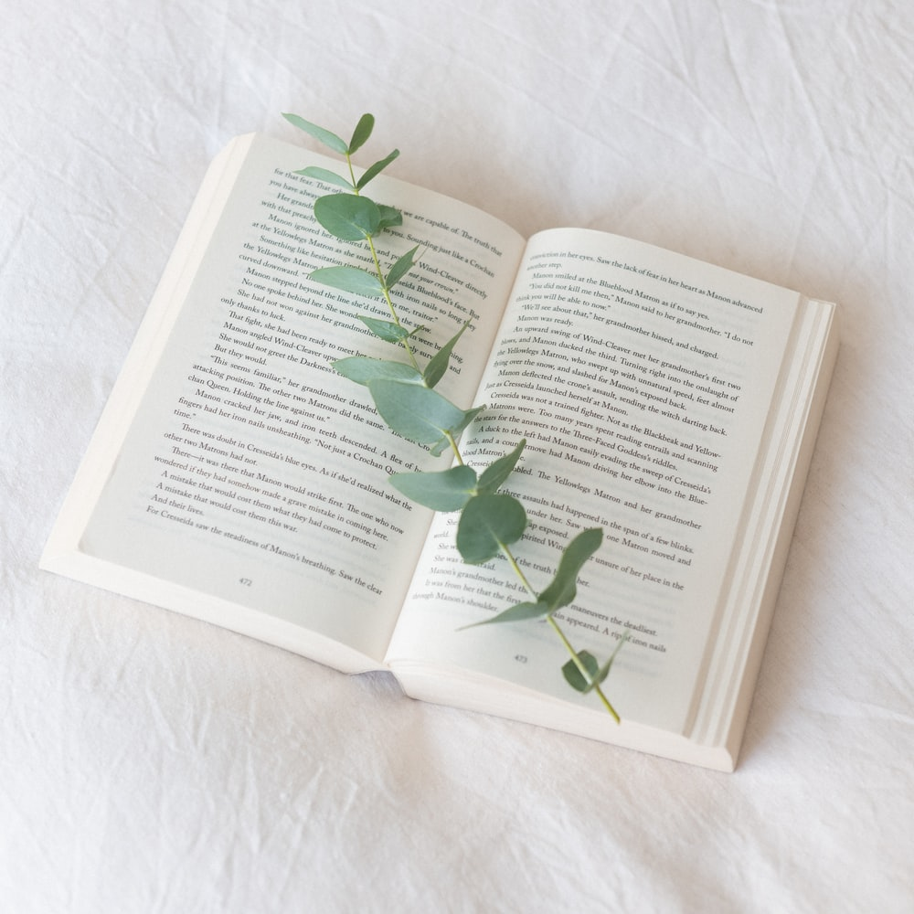 green leaf on white book page