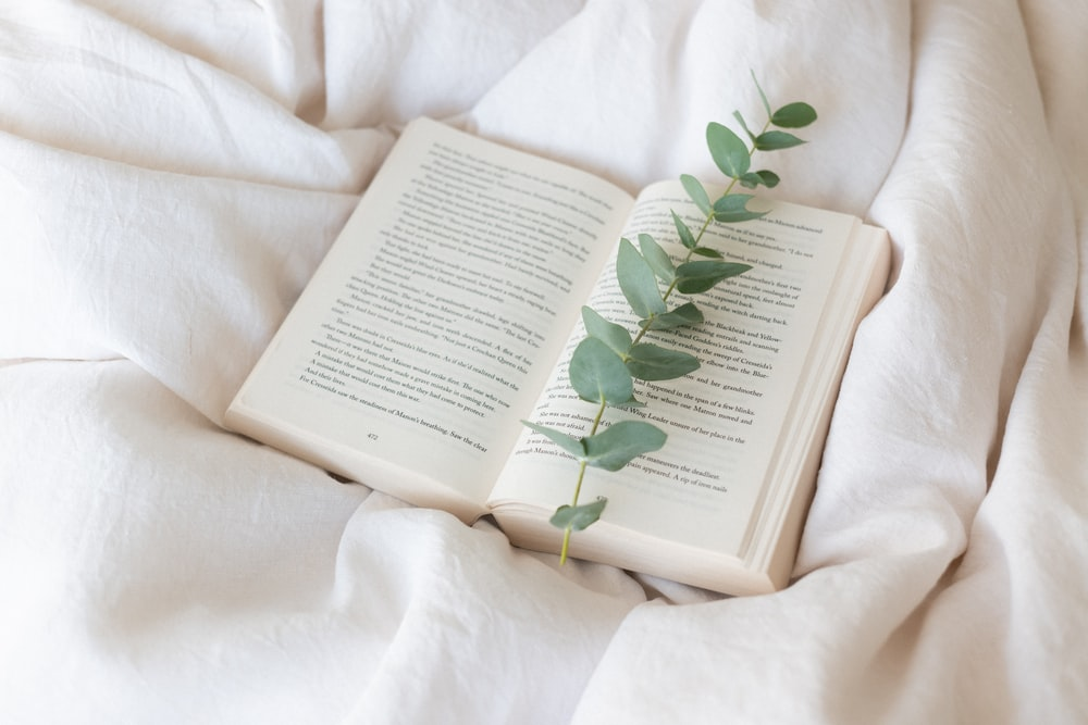 green leaf on book page