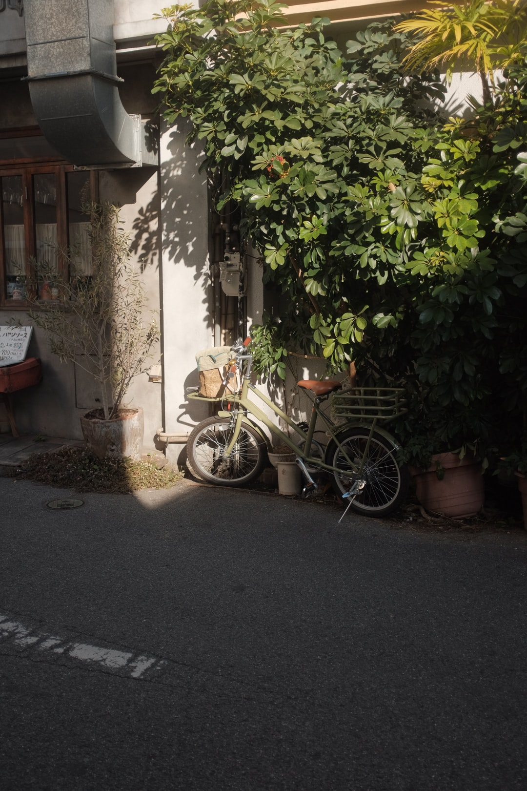 brown and black motorcycle parked beside green plants during daytime