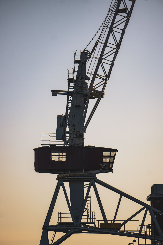 black and brown crane under gray sky