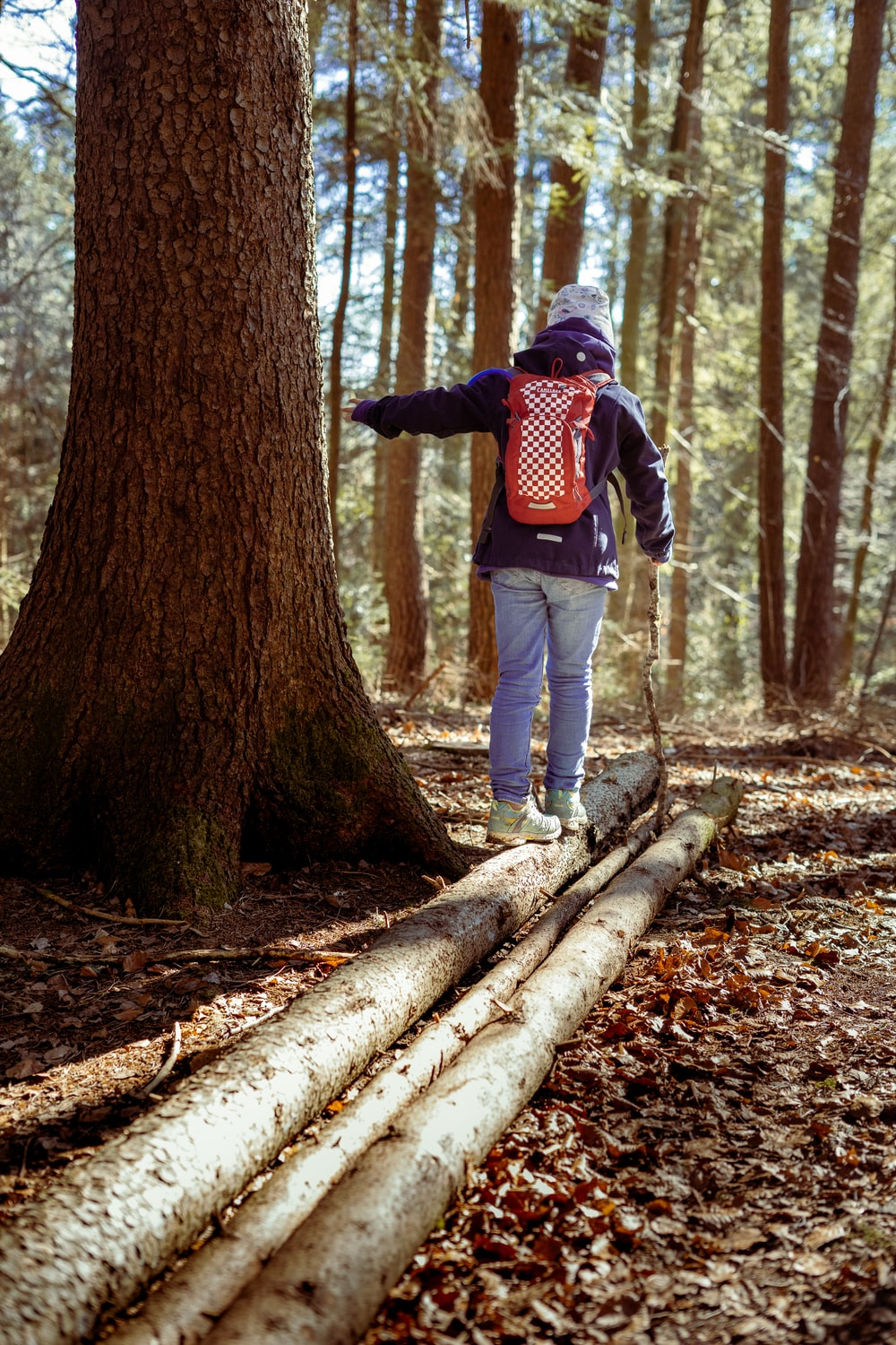man in red and black jacket and blue denim jeans standing on tree log during daytime