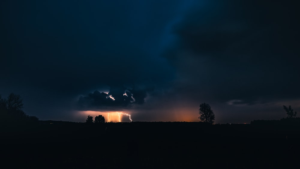 silhouette of trees under dark sky