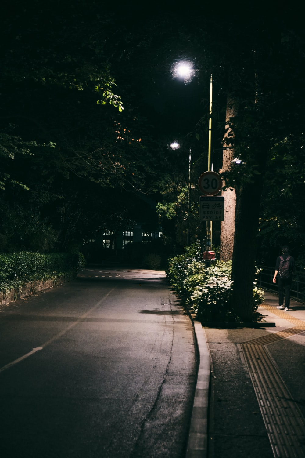 gray concrete road between green trees during night time