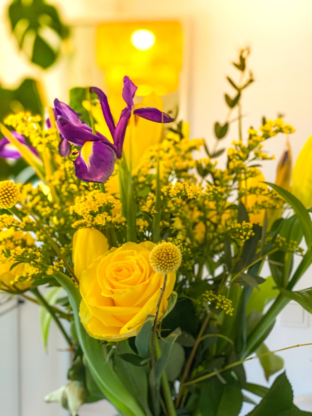 yellow and purple flowers in bloom during daytime