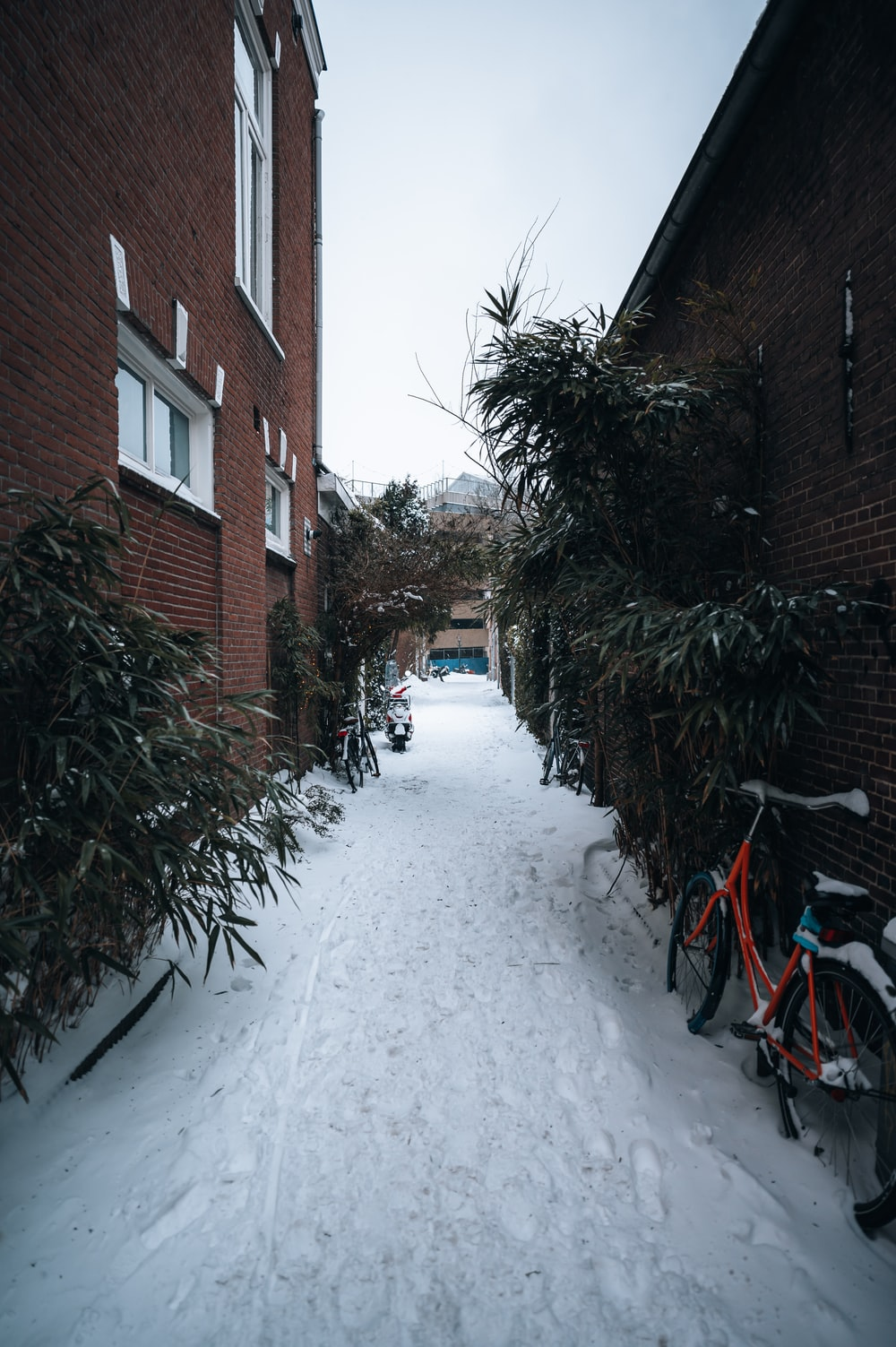 red brick building covered with snow