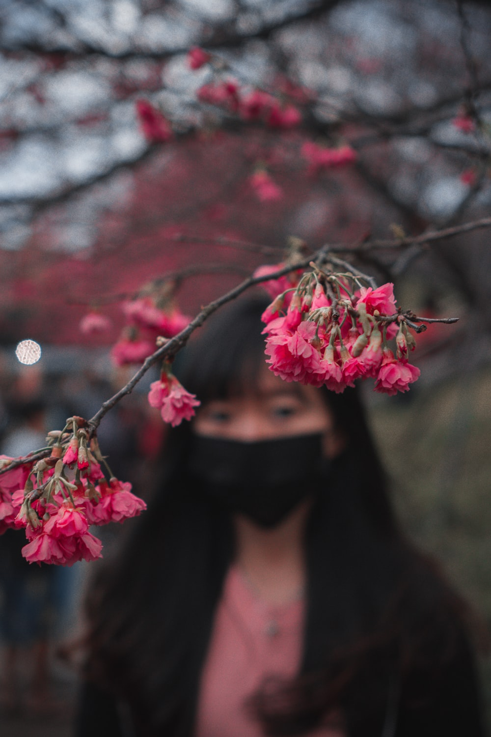 woman in black hijab holding pink flowers