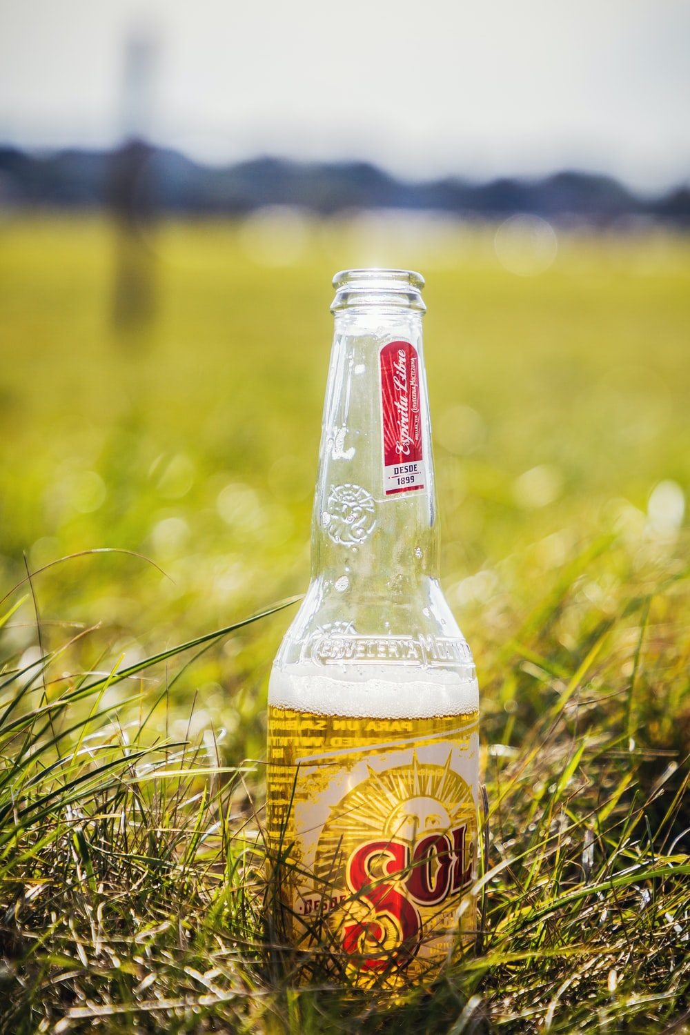 clear glass bottle on green grass during daytime