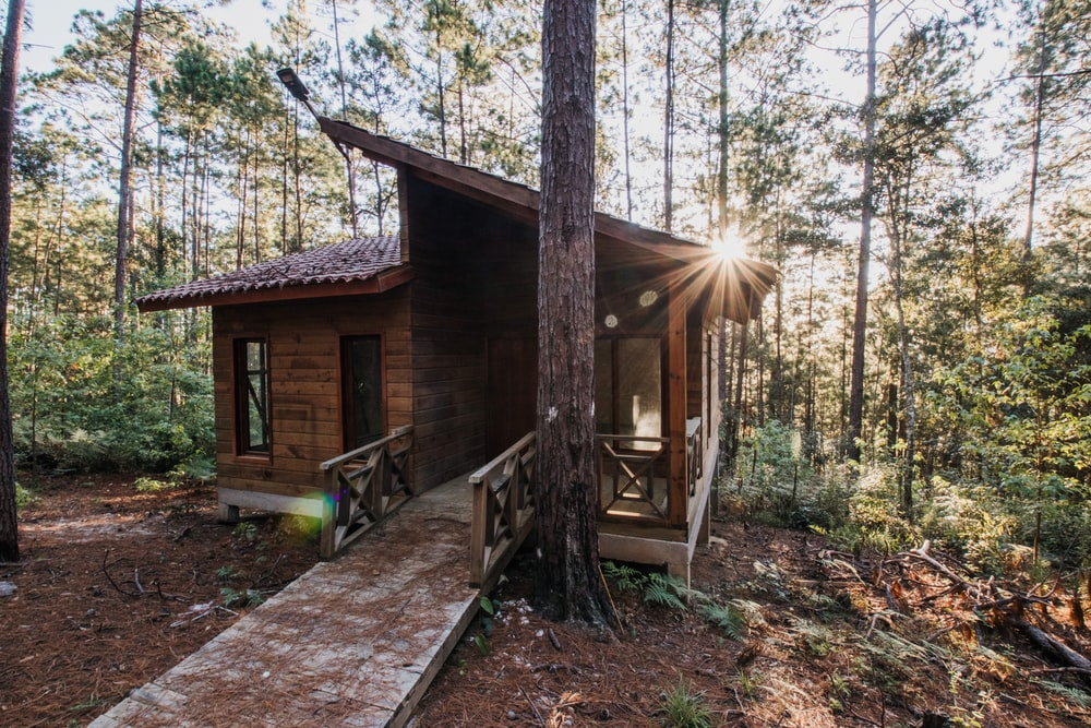 brown wooden house near trees during daytime