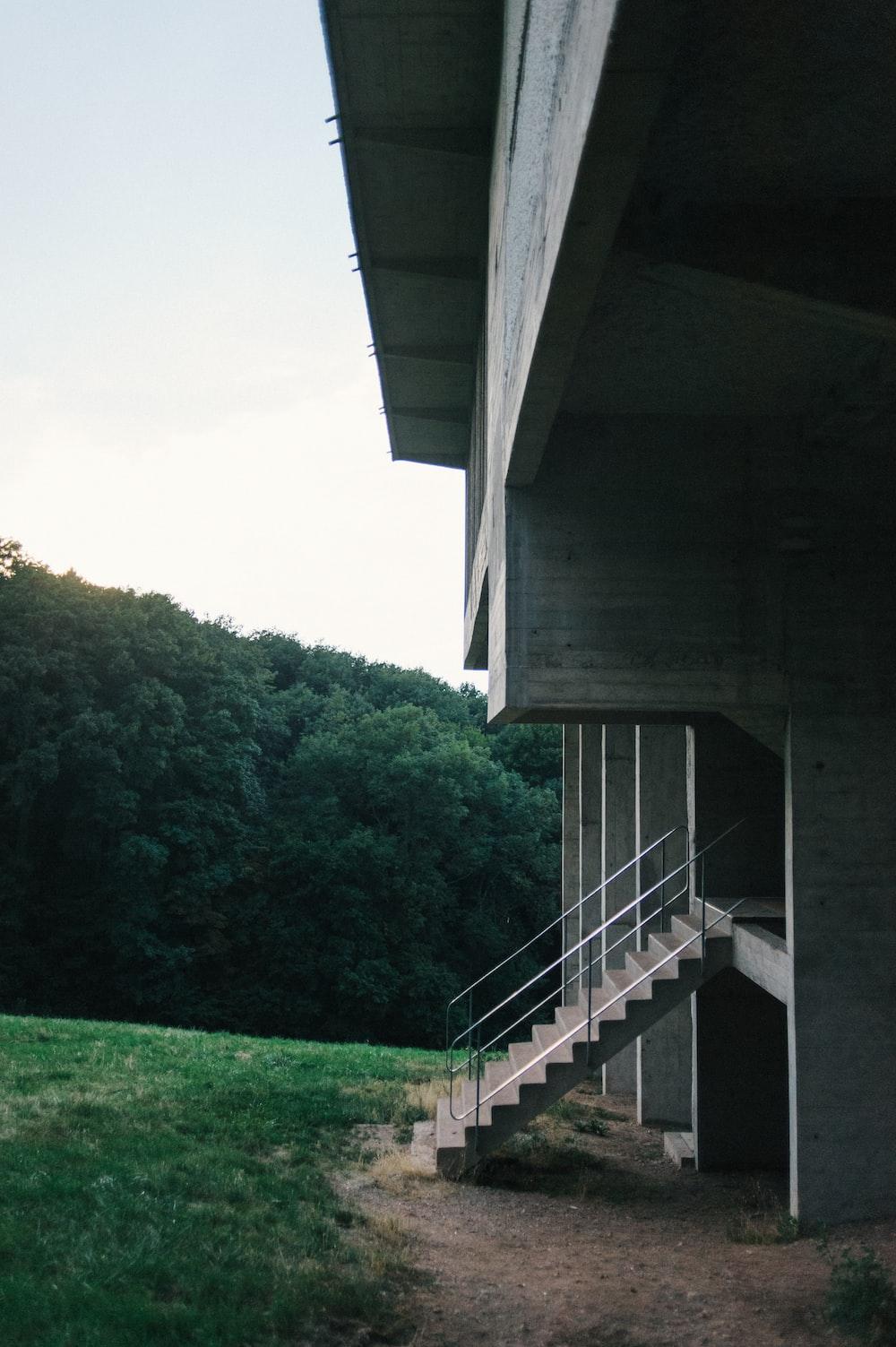 green grass field under gray concrete bridge