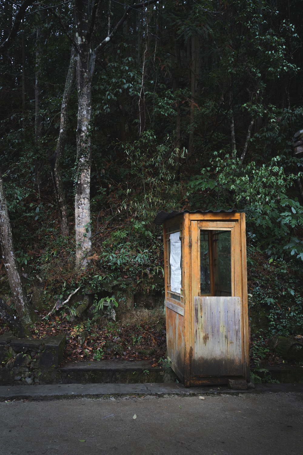 brown wooden shed in forest during daytime