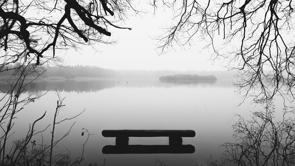 black wooden bench near body of water during foggy weather
