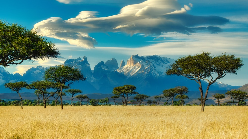 Free Africa Landscape Images Pictures And Freeimages Com