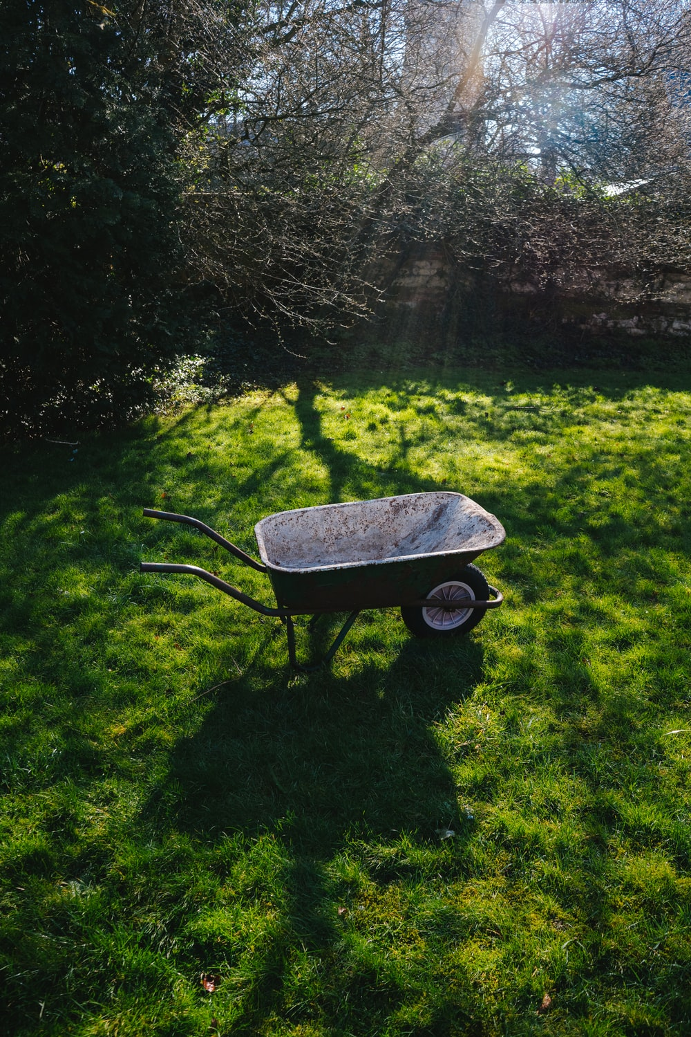 black and brown wheelbarrow on green grass field