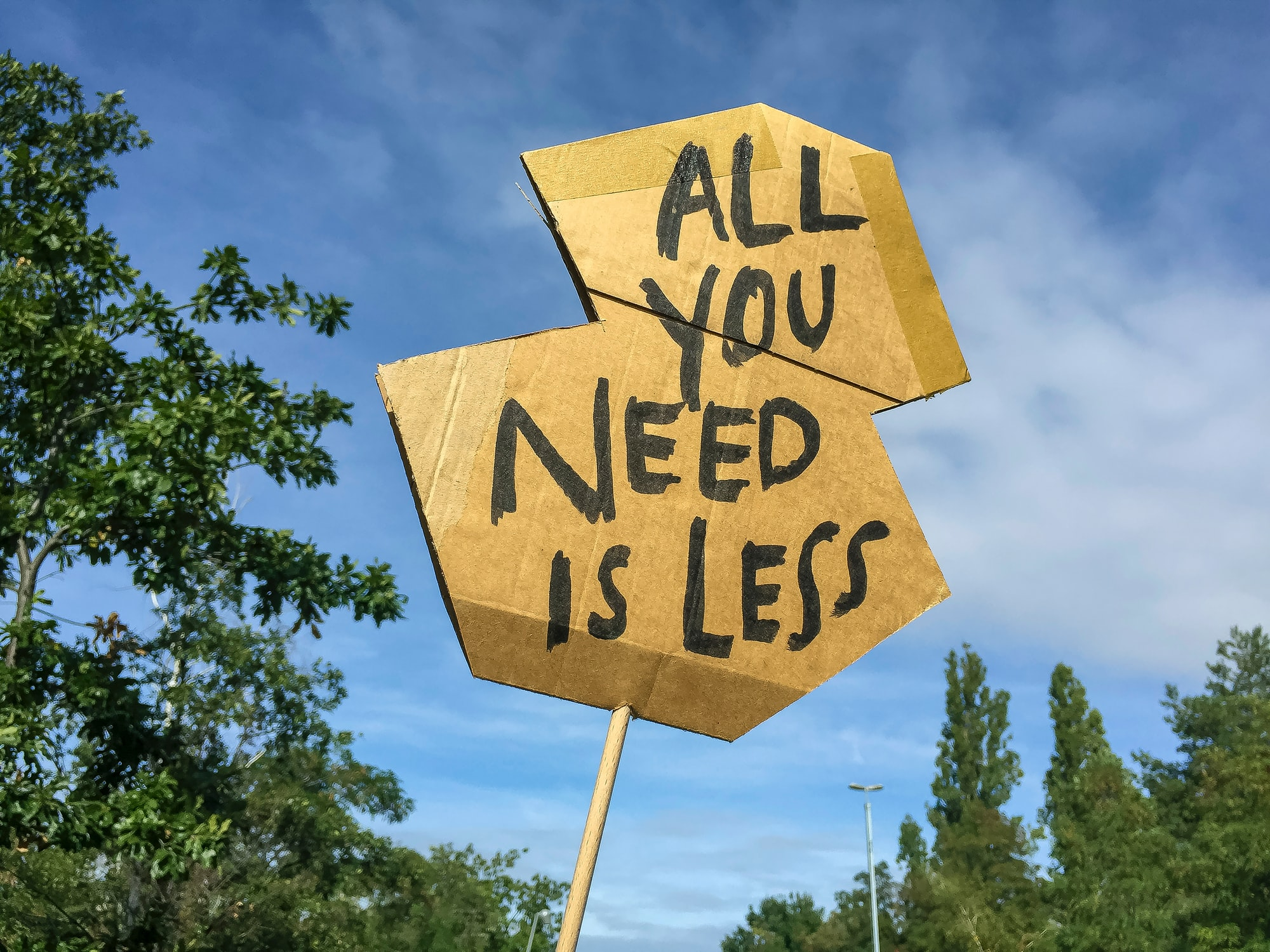 »all you need is less« poster during climate change protest in Berlin