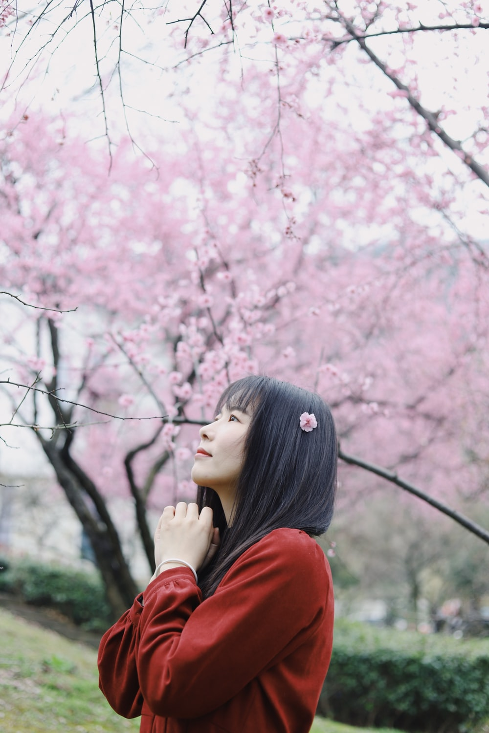 woman in red long sleeve shirt standing under pink cherry blossom tree during daytime