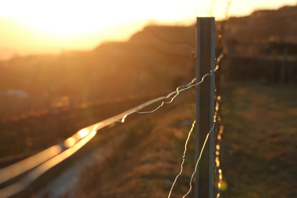 grey metal wire fence during sunset